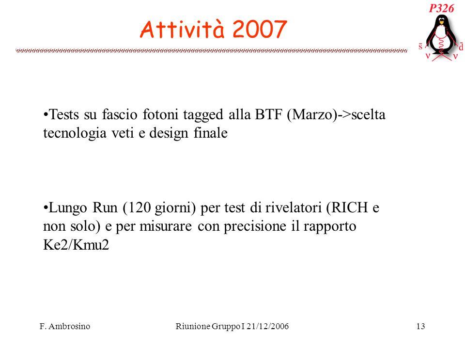 F. AmbrosinoRiunione Gruppo I 21/12/200613 Attività 2007 Tests su fascio fotoni tagged alla BTF (Marzo)->scelta tecnologia veti e design finale Lungo
