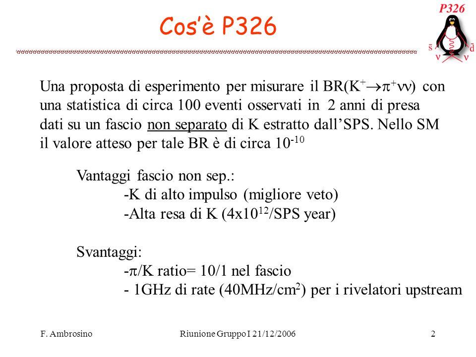 F. AmbrosinoRiunione Gruppo I 21/12/20062 Cosè P326 Una proposta di esperimento per misurare il BR(K + con una statistica di circa 100 eventi osservat