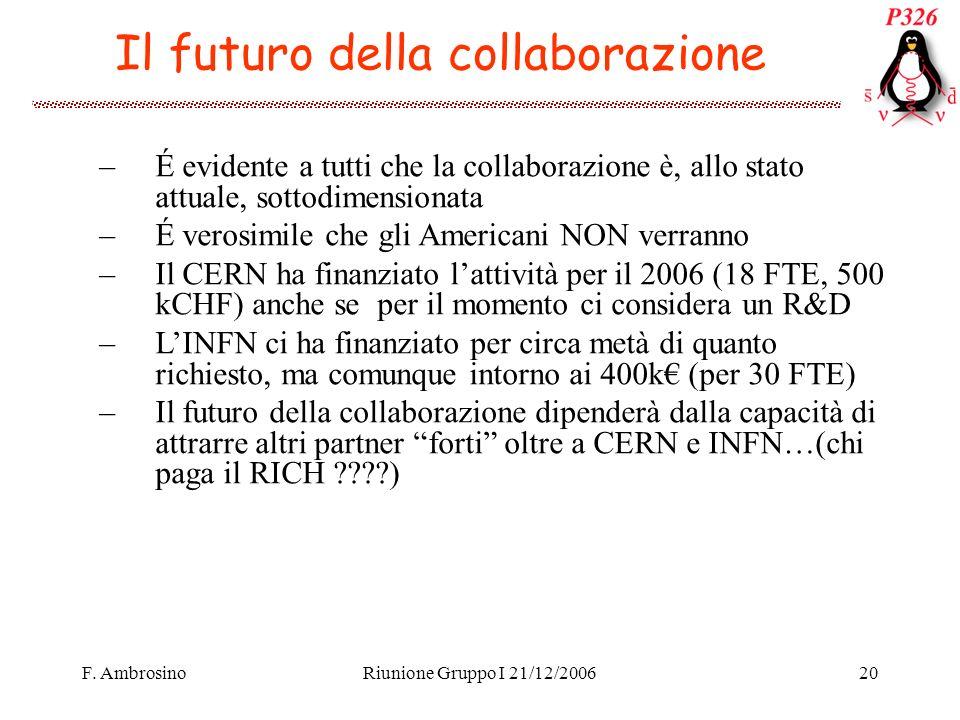 F. AmbrosinoRiunione Gruppo I 21/12/200620 Il futuro della collaborazione –É evidente a tutti che la collaborazione è, allo stato attuale, sottodimens