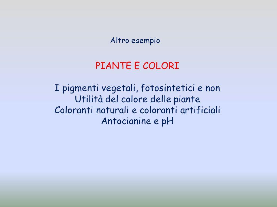 PIANTE E COLORI I pigmenti vegetali, fotosintetici e non Utilità del colore delle piante Coloranti naturali e coloranti artificiali Antocianine e pH Altro esempio