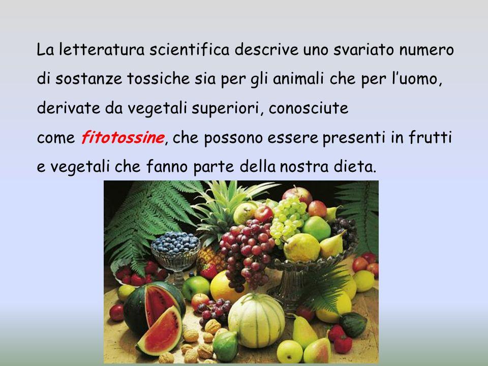 La letteratura scientifica descrive uno svariato numero di sostanze tossiche sia per gli animali che per luomo, derivate da vegetali superiori, conosciute come fitotossine, che possono essere presenti in frutti e vegetali che fanno parte della nostra dieta.
