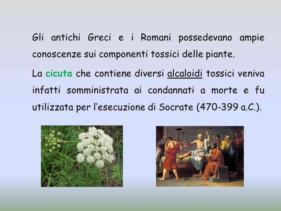 Gli antichi Greci e i Romani possedevano ampie conoscenze sui componenti tossici delle piante. La cicuta che contiene diversi alcaloidi tossici veniva
