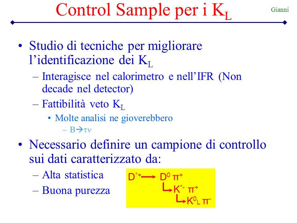 Control Sample per i K L Studio di tecniche per migliorare lidentificazione dei K L –Interagisce nel calorimetro e nellIFR (Non decade nel detector) –