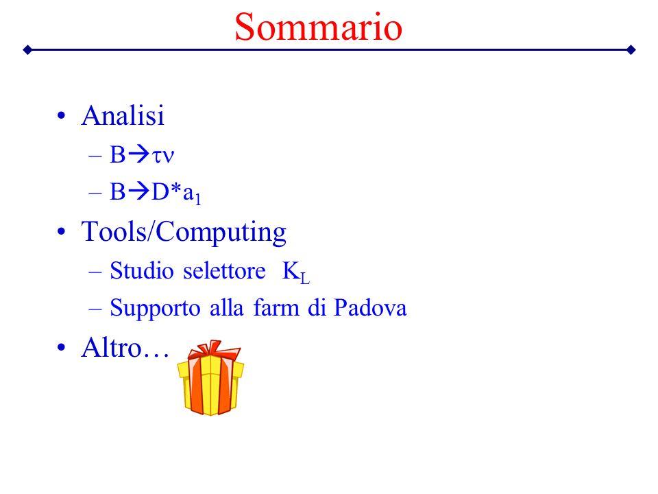 Sommario Analisi –B –B D*a 1 Tools/Computing –Studio selettore K L –Supporto alla farm di Padova Altro…