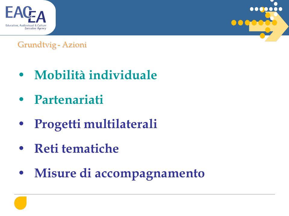 Grundtvig - Azioni Mobilità individuale Partenariati Progetti multilaterali Reti tematiche Misure di accompagnamento