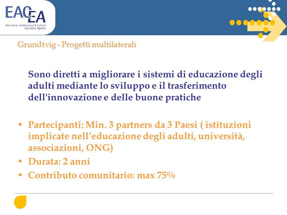 Grundtvig - Progetti multilaterali Sono diretti a migliorare i sistemi di educazione degli adulti mediante lo sviluppo e il trasferimento dell innovazione e delle buone pratiche Partecipanti: Min.