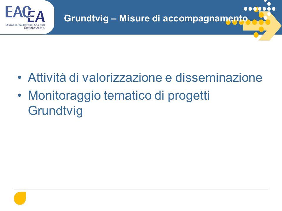 Grundtvig – Misure di accompagnamento Attività di valorizzazione e disseminazione Monitoraggio tematico di progetti Grundtvig