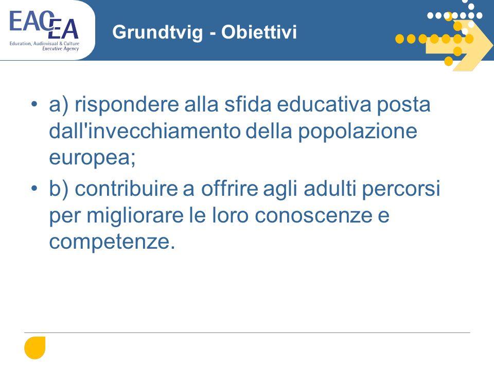 Grundtvig - Obiettivi a) rispondere alla sfida educativa posta dall invecchiamento della popolazione europea; b) contribuire a offrire agli adulti percorsi per migliorare le loro conoscenze e competenze.