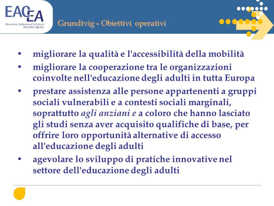 Grundtvig – Obiettivi operativi migliorare la qualità e l'accessibilità della mobilità migliorare la cooperazione tra le organizzazioni coinvolte nell