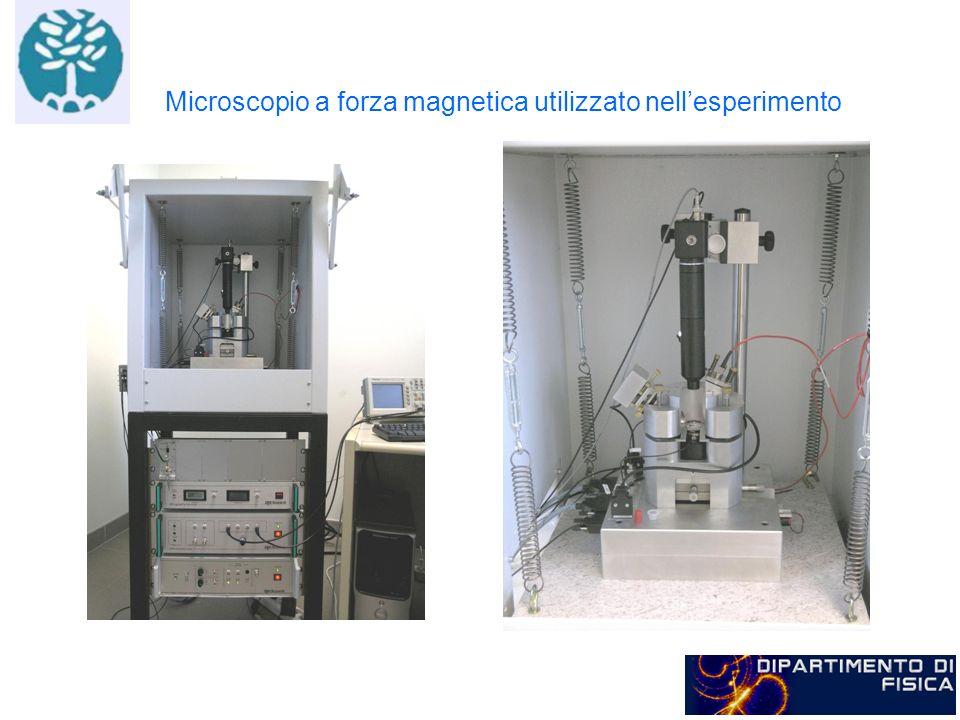 Microscopio a forza magnetica utilizzato nellesperimento