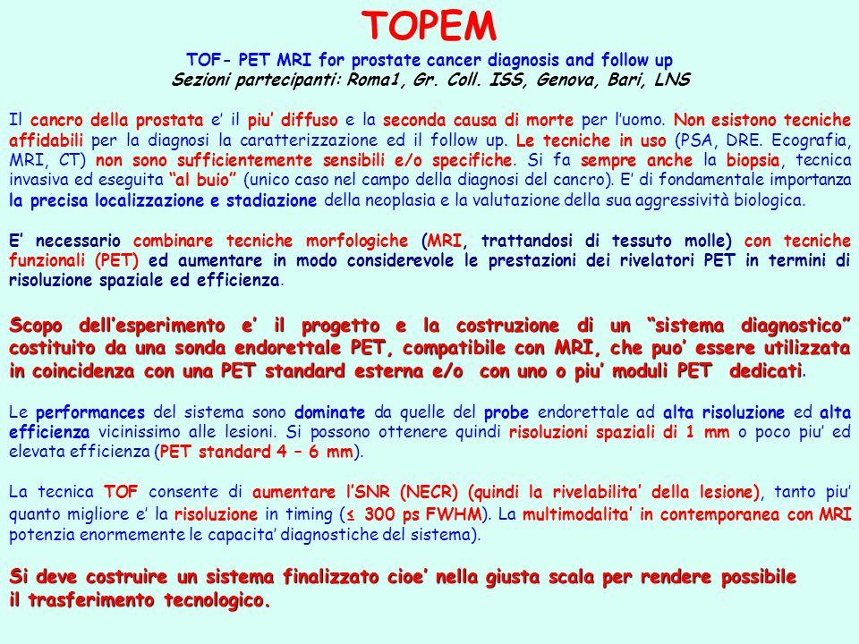 TOPEM TOF- PET MRI for prostate cancer diagnosis and follow up Sezioni partecipanti: Roma1, Gr. Coll. ISS, Genova, Bari, LNS Il cancro della prostata
