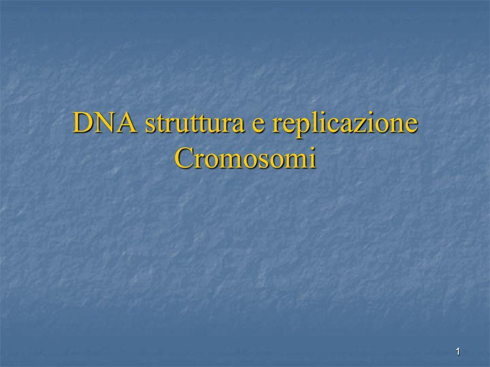 1 DNA struttura e replicazione Cromosomi