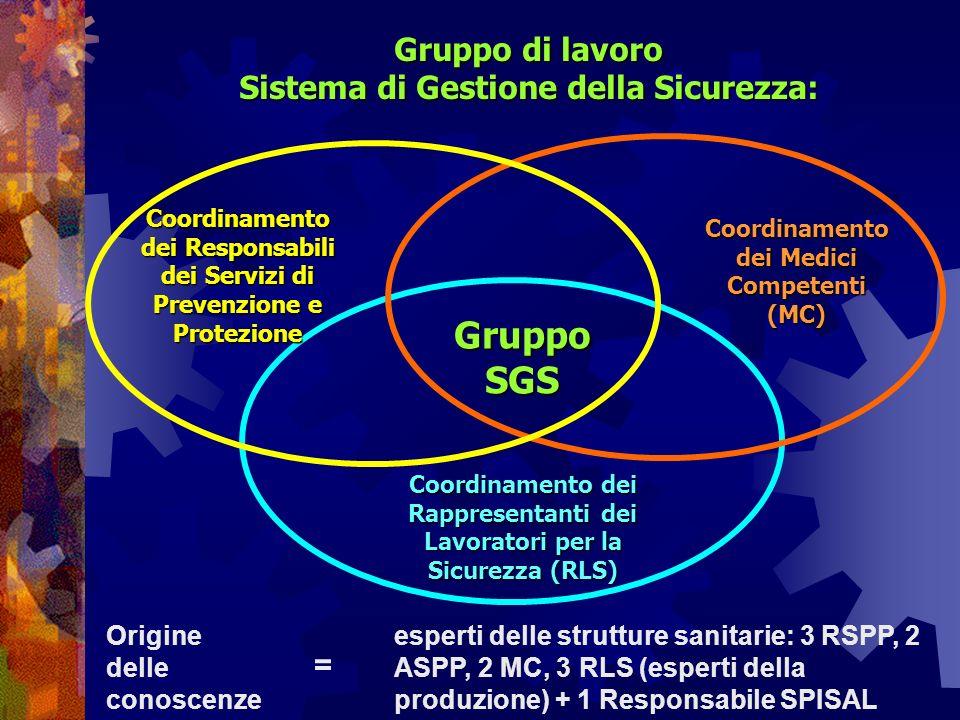 Gruppo di lavoro Sistema di Gestione della Sicurezza: Coordinamento dei Rappresentanti dei Lavoratori per la Sicurezza (RLS) Coordinamento dei Responsabili dei Servizi di Prevenzione e Protezione GruppoSGS Coordinamento dei Medici Competenti (MC) esperti delle strutture sanitarie: 3 RSPP, 2 ASPP, 2 MC, 3 RLS (esperti della produzione) + 1 Responsabile SPISAL Origine delle conoscenze =