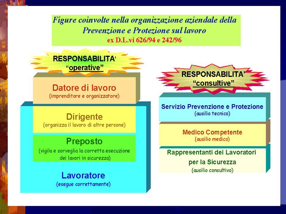 Documenti del Sistema di Gestione della Sicurezza Manuale Piani, programmi, disposizioni, modulistica, etc.