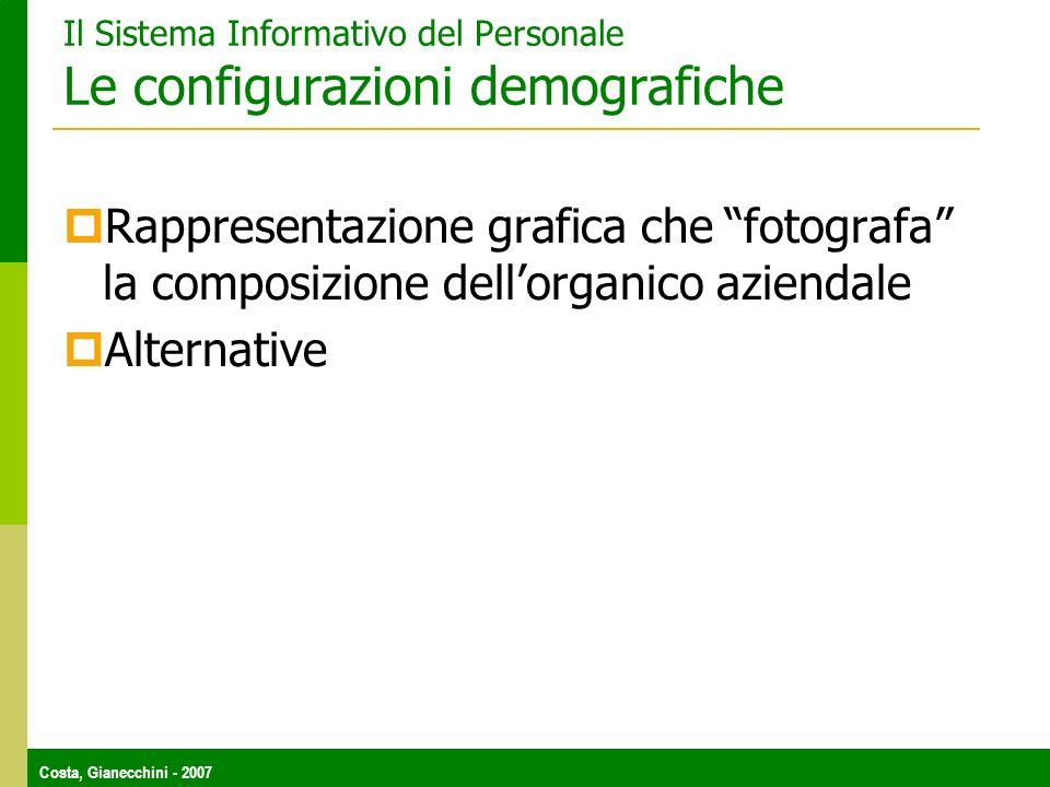 Costa, Gianecchini - 2007 Il Sistema Informativo del Personale Le configurazioni demografiche Rappresentazione grafica che fotografa la composizione dellorganico aziendale Alternative