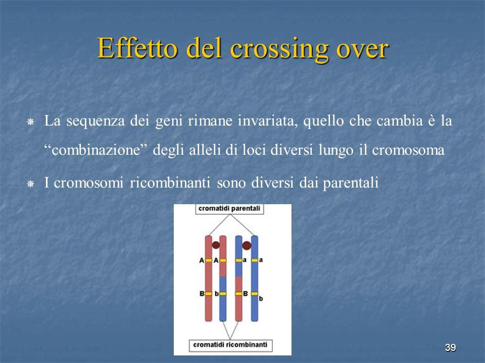 39 Effetto del crossing over La sequenza dei geni rimane invariata, quello che cambia è la combinazione degli alleli di loci diversi lungo il cromosom