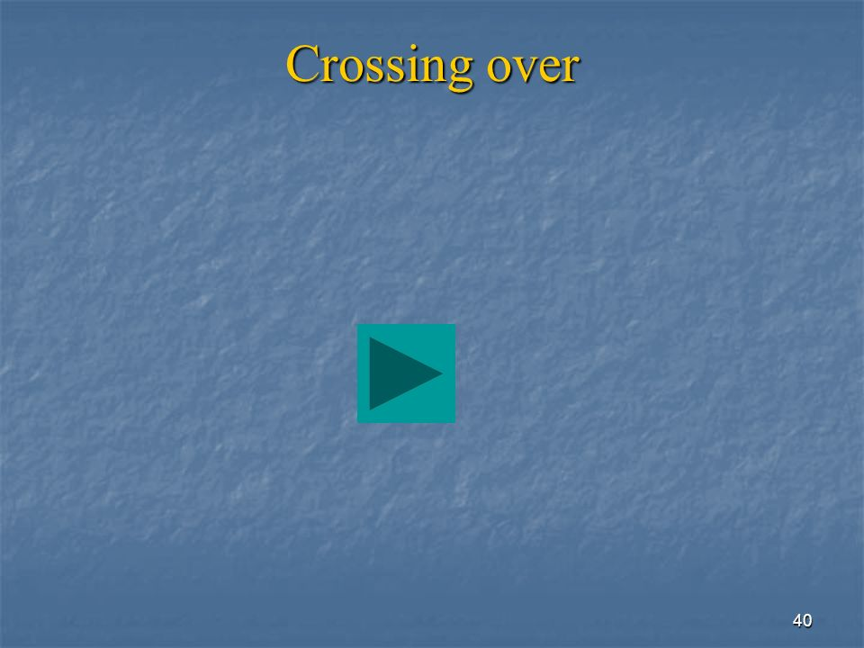 40 Crossing over