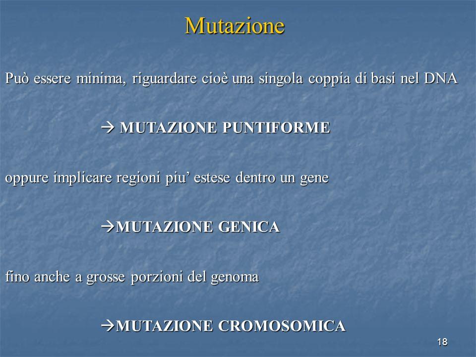 18 Mutazione Può essere minima, riguardare cioè una singola coppia di basi nel DNA MUTAZIONE PUNTIFORME MUTAZIONE PUNTIFORME oppure implicare regioni