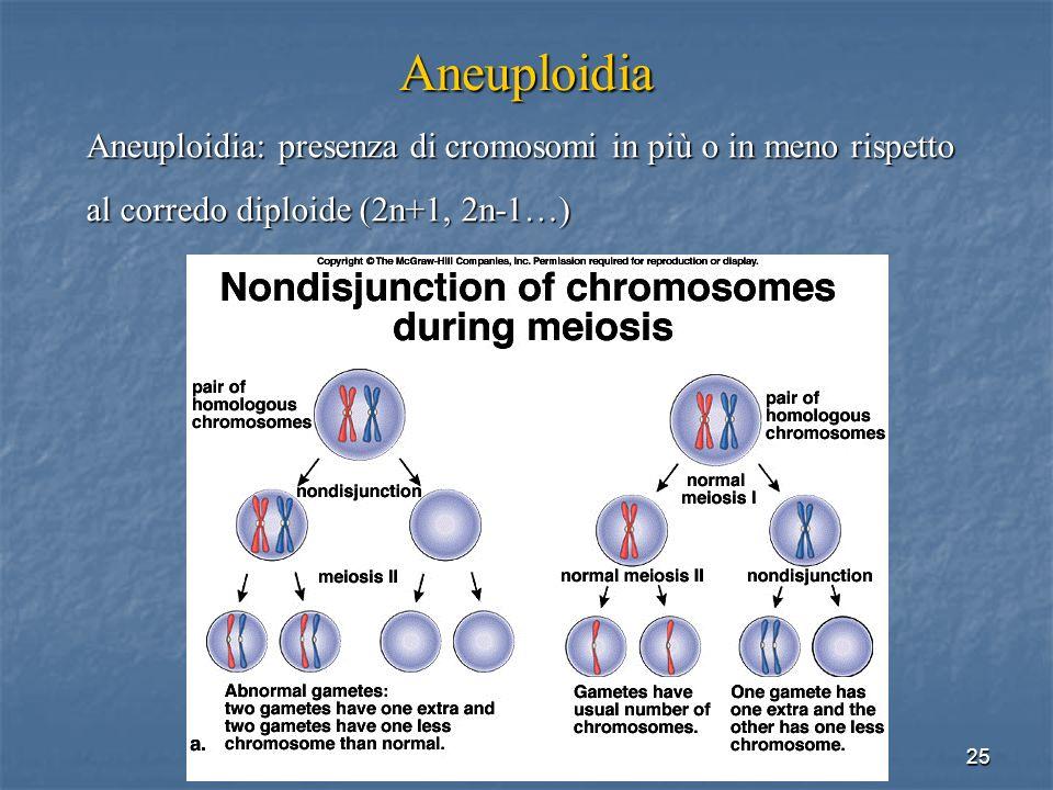 25 Aneuploidia Aneuploidia: presenza di cromosomi in più o in meno rispetto al corredo diploide (2n+1, 2n-1…)