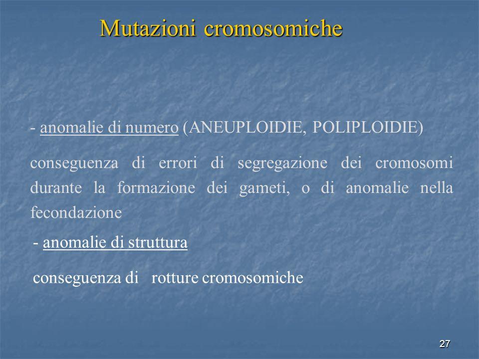 27 - anomalie di numero (ANEUPLOIDIE, POLIPLOIDIE) conseguenza di errori di segregazione dei cromosomi durante la formazione dei gameti, o di anomalie