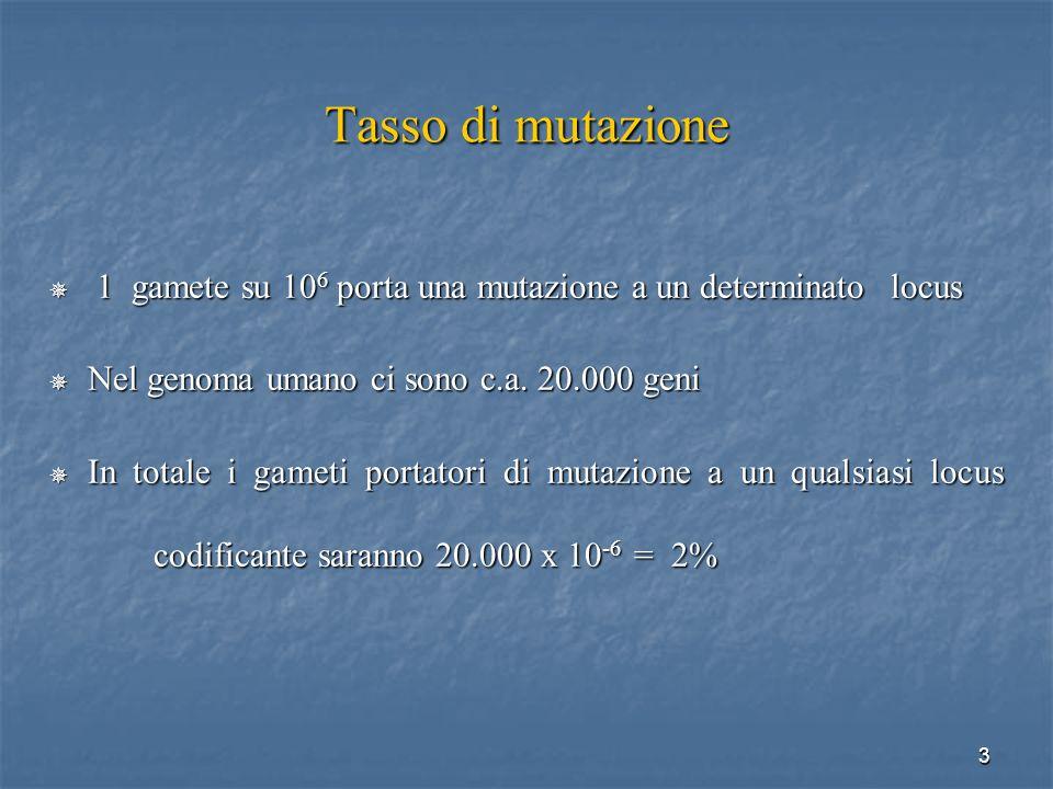 14 Mutazioni germinali Mutazioni germinali possono presentarsi in tutte le cellule germinali o solo in una proporzione di esse (mosaicismo germinale) a seconda dello stadio di sviluppo dellembrione in cui sono avvenute, e una volta trasmesse alla prole diventano stabili Tutte le cellule (tutte le germinali + tutte le somatiche) portano la mutazione