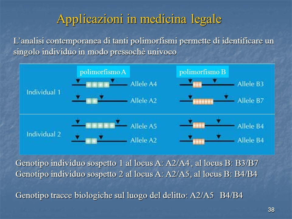 38 Applicazioni in medicina legale Lanalisi contemporanea di tanti polimorfismi permette di identificare un singolo individuo in modo pressochè univoc