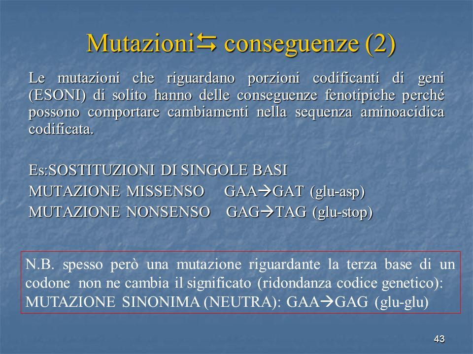 43 Le mutazioni che riguardano porzioni codificanti di geni (ESONI) di solito hanno delle conseguenze fenotipiche perché possono comportare cambiament