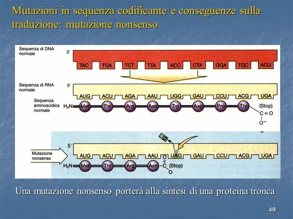 49 Mutazioni in sequenza codificante e conseguenze sulla traduzione: mutazione nonsenso Una mutazione nonsenso porterà alla sintesi di una proteina tr