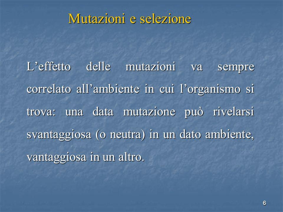 47 Esempio di mutazione missenso Anemia falciforme: mutazione missenso nel gene globina.