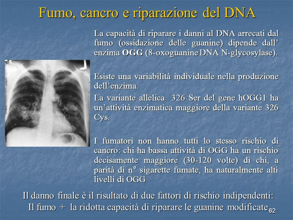 62 Fumo, cancro e riparazione del DNA La capacità di riparare i danni al DNA arrecati dal fumo (ossidazione delle guanine) dipende dall enzima OGG (8-
