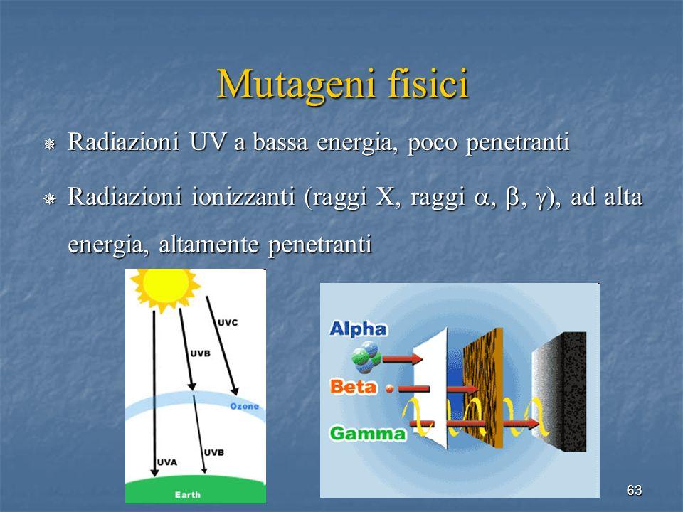 63 Mutageni fisici Radiazioni UV a bassa energia, poco penetranti Radiazioni UV a bassa energia, poco penetranti Radiazioni ionizzanti (raggi X, raggi