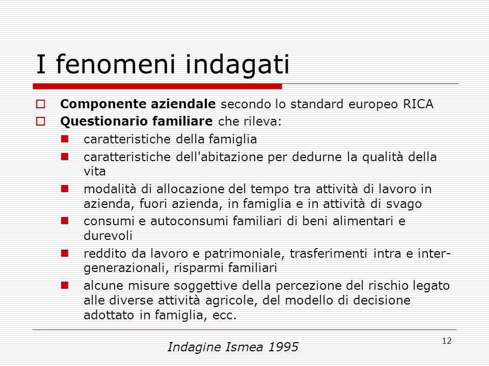 12 I fenomeni indagati Componente aziendale secondo lo standard europeo RICA Questionario familiare che rileva: caratteristiche della famiglia caratte