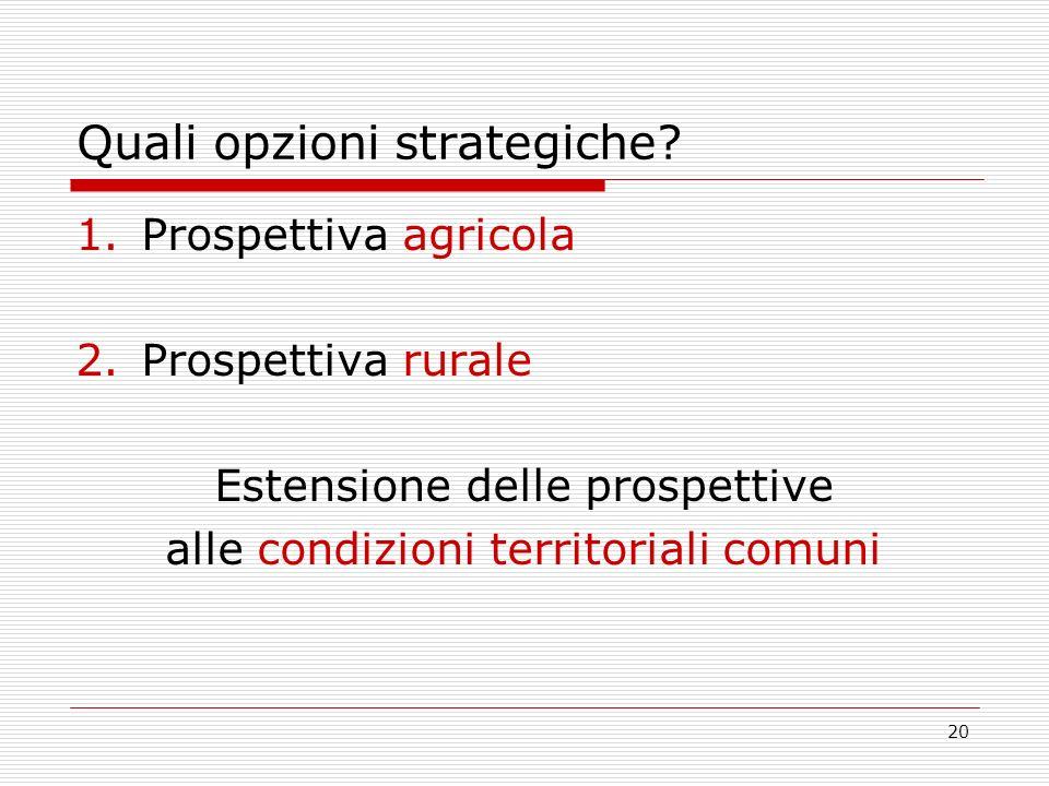20 Quali opzioni strategiche? 1.Prospettiva agricola 2.Prospettiva rurale Estensione delle prospettive alle condizioni territoriali comuni