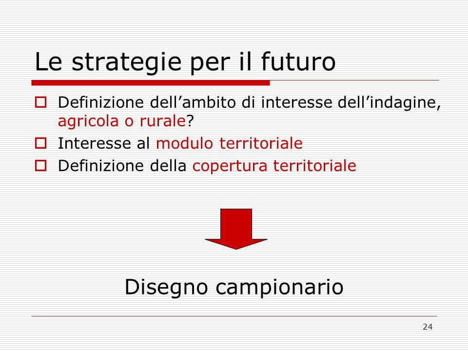 24 Le strategie per il futuro Definizione dellambito di interesse dellindagine, agricola o rurale? Interesse al modulo territoriale Definizione della
