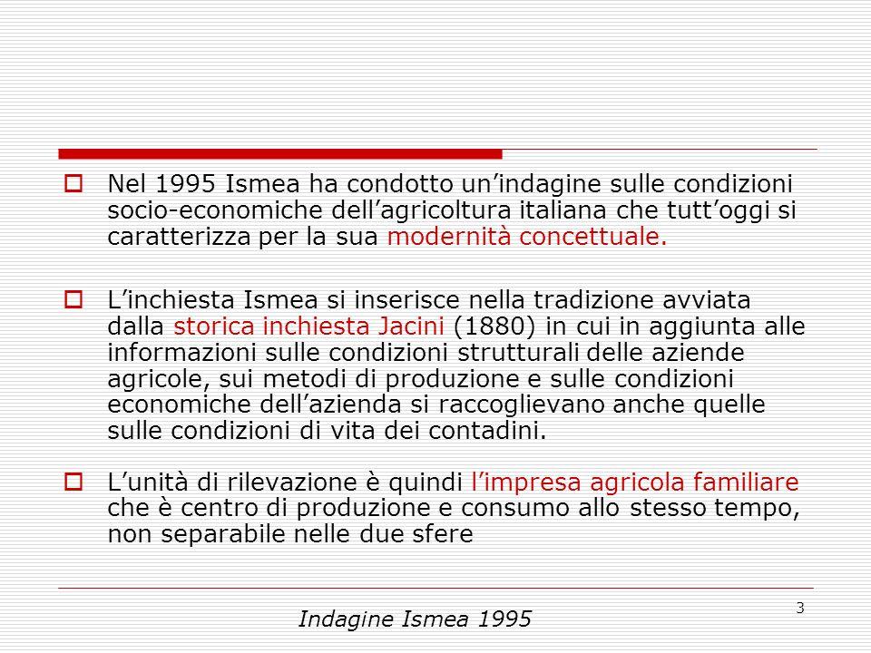 3 Nel 1995 Ismea ha condotto unindagine sulle condizioni socio-economiche dellagricoltura italiana che tuttoggi si caratterizza per la sua modernità concettuale.