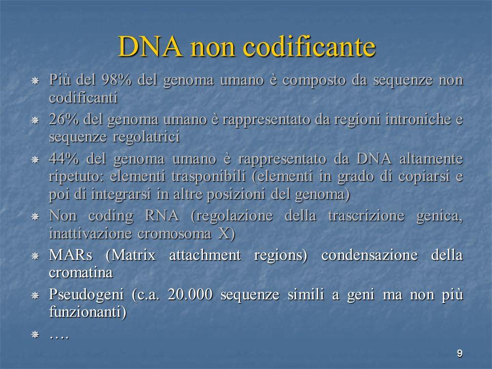 9 DNA non codificante Più del 98% del genoma umano è composto da sequenze non codificanti Più del 98% del genoma umano è composto da sequenze non codi