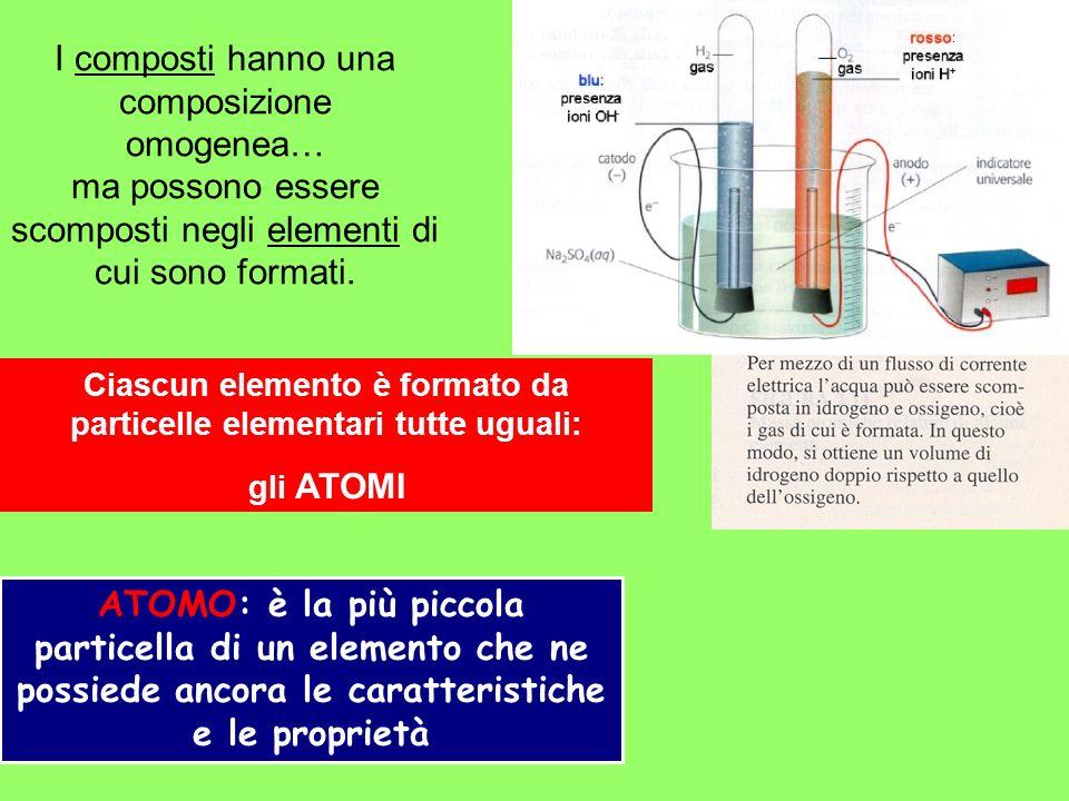 Protoni (+) Neutroni Elettroni (-) NUCLEO La massa di un atomo si misura in unità di massa atomica (u), pari ad 1/12 della massa del 12 C (1.6660610 -24 g) Massa atomica – Peso atomico ParticellaMassa Protone1.67 x 10 -24 g Neutrone1.67 x 10 -24 g Elettrone9.11 x 10 -28 g ISOTOPI: atomi dello stesso elemento che differiscono esclusivamente per il numero di neutroni 32 P 14 C Numero atomico (Z): numero di protoni Numero di massa (A): numero di protoni + numero di neutroni