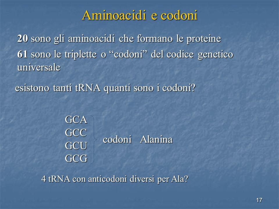 17 Aminoacidi e codoni 20 sono gli aminoacidi che formano le proteine 61 sono le triplette o codoni del codice genetico universale esistono tanti tRNA