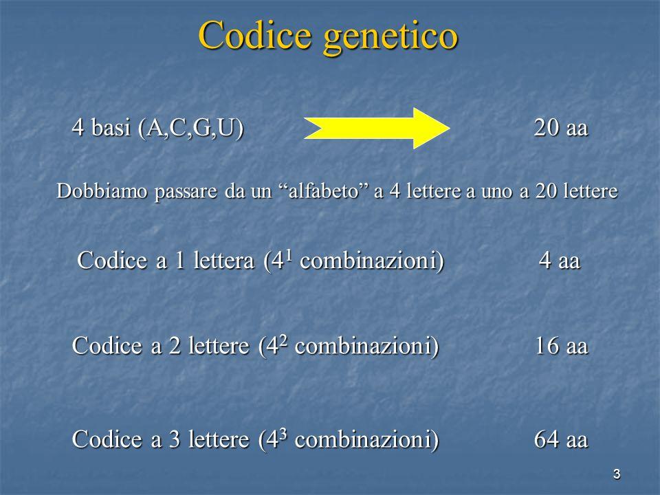 3 Codice genetico 4 basi(A,C,G,U)20 aa Codice a 1 lettera (4 1 combinazioni)4 aa Codice a 2 lettere (4 2 combinazioni)16 aa Codice a 3 lettere (4 3 co