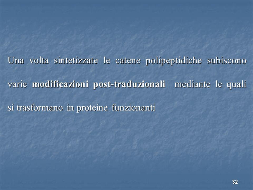 32 Una volta sintetizzate le catene polipeptidiche subiscono varie modificazioni post-traduzionali mediante le quali si trasformano in proteine funzio