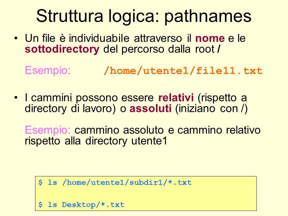 Struttura logica: pathnames Un file è individuabile attraverso il nome e le sottodirectory del percorso dalla root / Esempio: /home/utente1/file11.txt