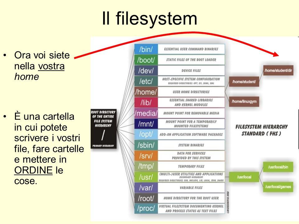 Il filesystem Ora voi siete nella vostra home È una cartella in cui potete scrivere i vostri file, fare cartelle e mettere in ORDINE le cose.
