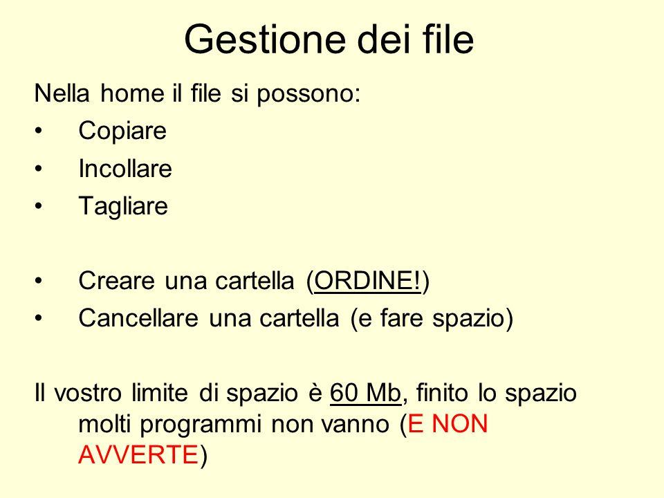 Gestione dei file Nella home il file si possono: Copiare Incollare Tagliare Creare una cartella (ORDINE!) Cancellare una cartella (e fare spazio) Il vostro limite di spazio è 60 Mb, finito lo spazio molti programmi non vanno (E NON AVVERTE)