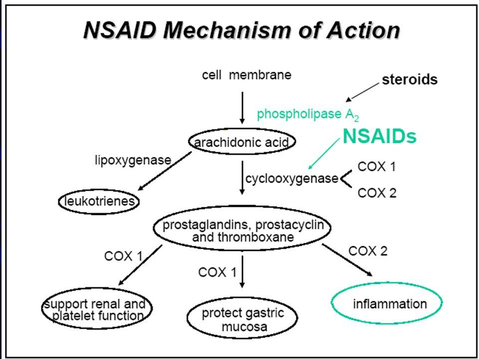 Effetti avversi TRATTO GASTROINTESTINALE Gli effetti dovuti all accumulo sono: - dose dipendenti; - spesso proporzionali alla potenza del farmaco come inibitore della cicloossigenasi; - osservabili anche dopo somministrazione parenterale (o rettale).