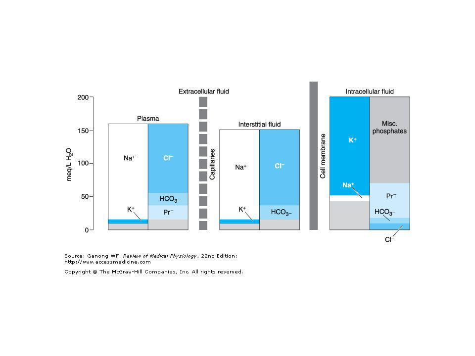 Transferrina* *Saturazione: 16% - 30% - 45 % Carenza di Fe2+ normale Eccesso di Fe2+