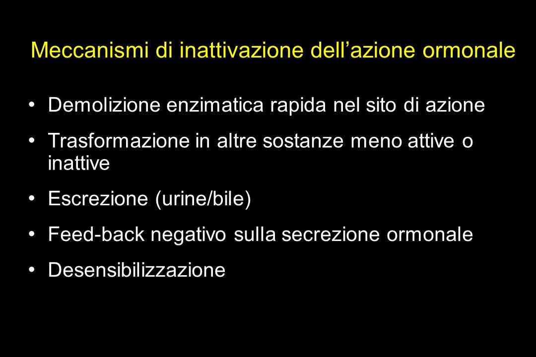 Meccanismi di inattivazione dellazione ormonale Demolizione enzimatica rapida nel sito di azione Trasformazione in altre sostanze meno attive o inattive Escrezione (urine/bile) Feed-back negativo sulla secrezione ormonale Desensibilizzazione