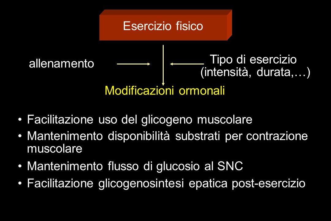 Esercizio fisico allenamento Tipo di esercizio (intensità, durata,…) Modificazioni ormonali Facilitazione uso del glicogeno muscolare Mantenimento disponibilità substrati per contrazione muscolare Mantenimento flusso di glucosio al SNC Facilitazione glicogenosintesi epatica post-esercizio