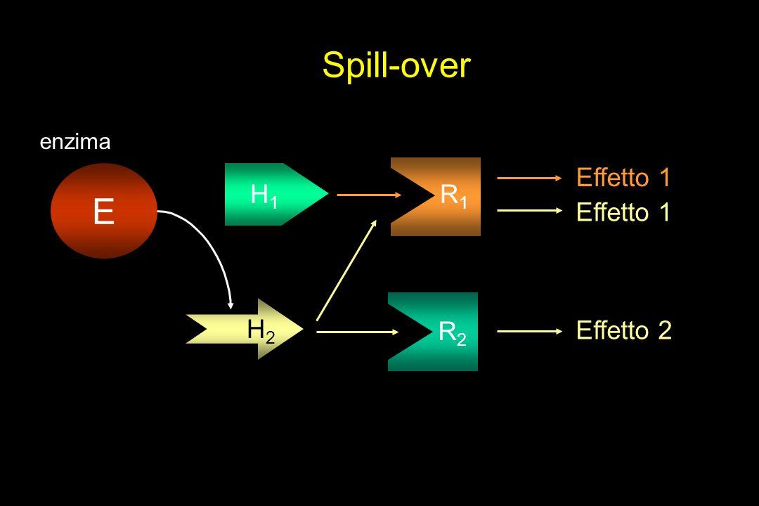 Spill-over H1H1 R1R1 Effetto 1 H2H2 R2R2 Effetto 2 Effetto 1 E enzima