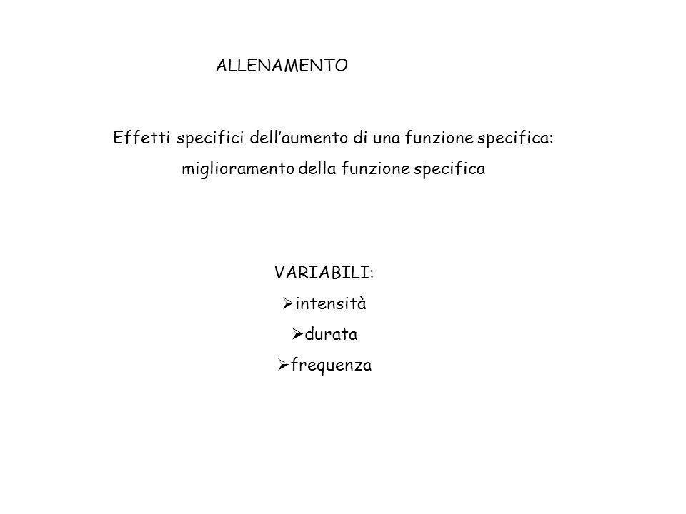 ALLENAMENTO (TRAINING) Effetti specifici dellaumento di una funzione specifica: miglioramento della funzione specifica VARIABILI: intensità durata fre
