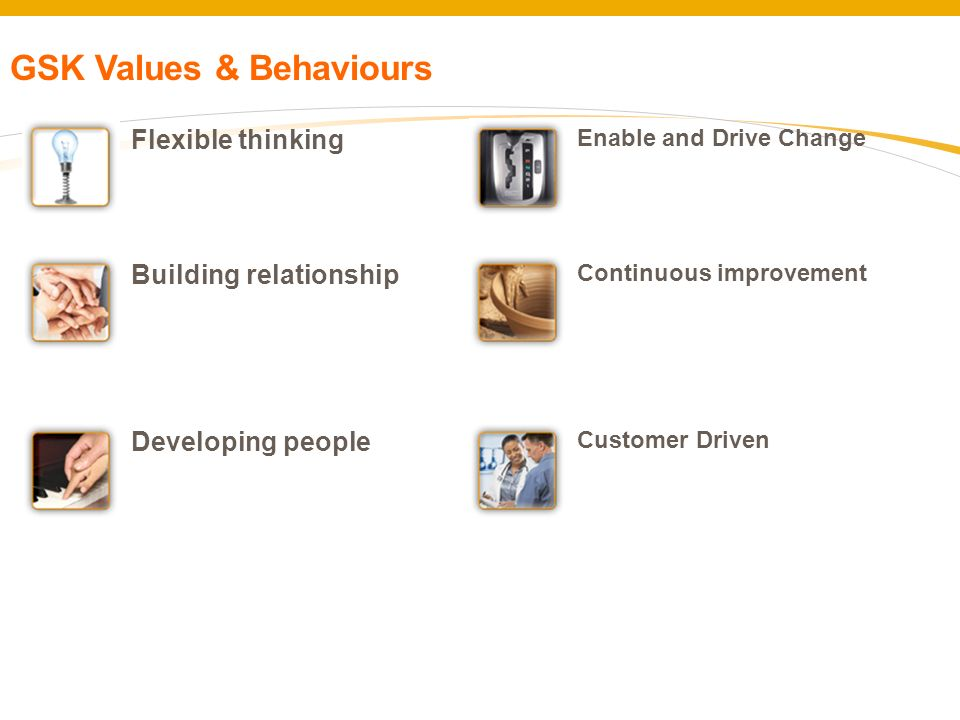 Flexible thinking Building relationship Developing people Enable and Drive Change Continuous improvement Customer Driven GSK Values & Behaviours